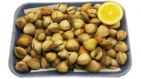 Berberechos gallegos 1 kg aprox 90 und